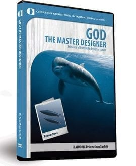 30-9-610  God the Master Designer 3D-2015-2-15-23.54.48.0