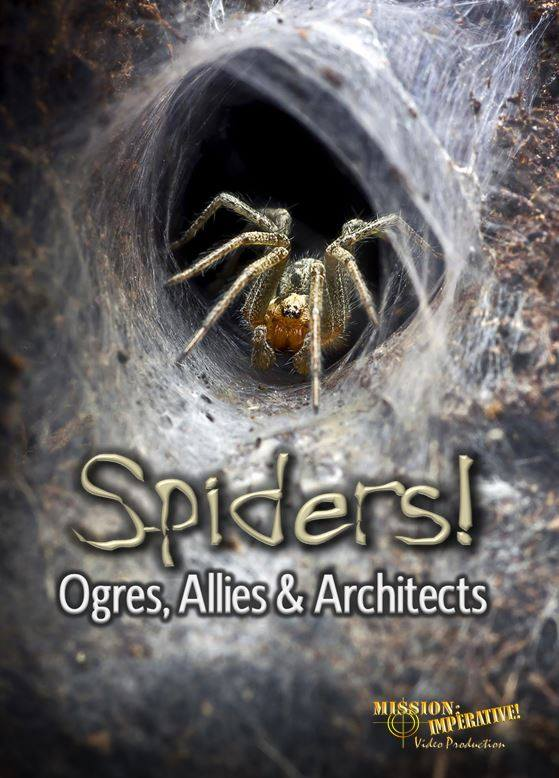 Spiders! Ogres, Allies & Architects