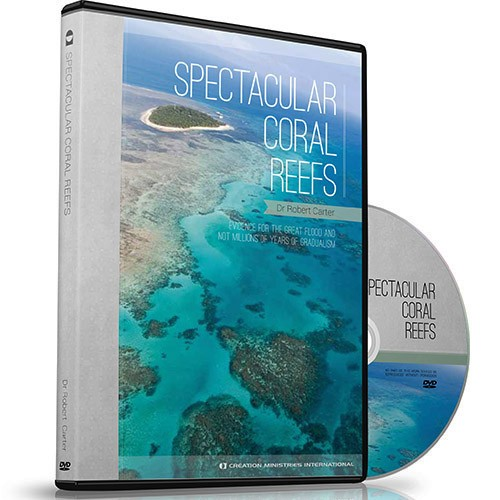 30-9-628 Spectacular Coral Reefs-2015-2-15-23.54.37.639-2015-2-16-0.02.31.243