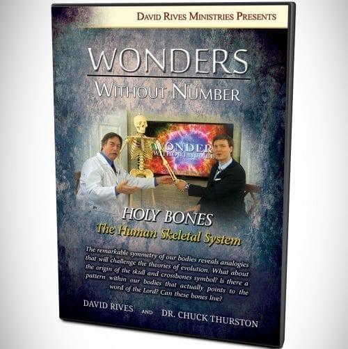 Holy Bones - The Human Skeletal System DVD