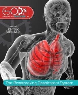 breathtaking_respiratory_system_sm