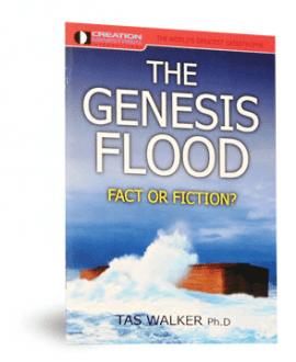 genesis flood fact or fiction booklet cmi tas walker