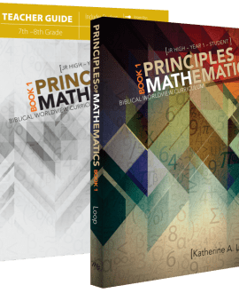 Principles of Mathematics | Year 1 | Text & Workbook Set