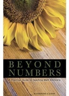 beyond numbers book katherine loop