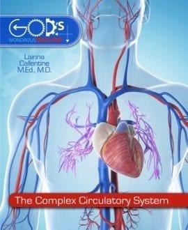 the complex circulatory system mb book lainna callentine