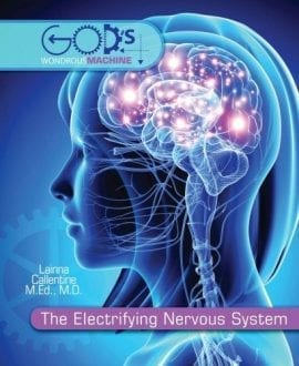 the electrifying nervous system lainna callentine mb book