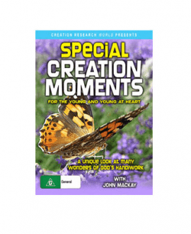 special creation moments dvd john mackay creation research