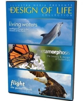 design of life DVD front