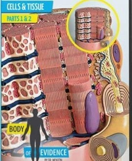 body of evidence 1 tissue and cells david menton aig dvd