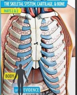 body of evidence 2 skeletal system dvd david menton aig