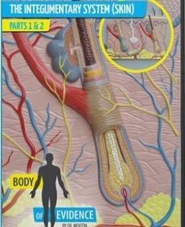 body of evidence 3 integumentary skin system dvd david menton aig