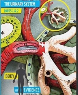 body of evidence 7 urinary system dvd david menton aig
