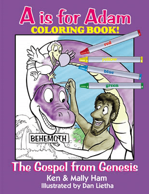 a is for adam coloring book ken ham dan lietha aig
