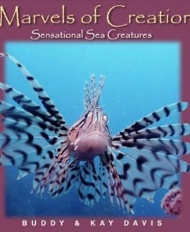 marvels of creation sea creatures buddy and kay davis master books