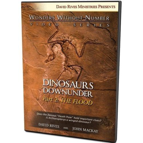 Dinosaurs Down Under | Part 2: The Flood DVD