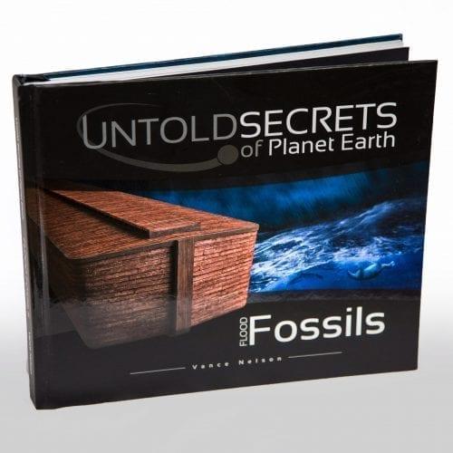 flood fossils