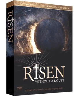 risen without a doubt dvd series creation today