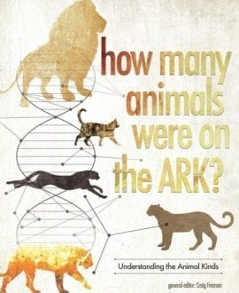 how-many-animials-on-the-ark-cover-1st-sm