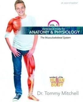 musculoskeletal_system_sm