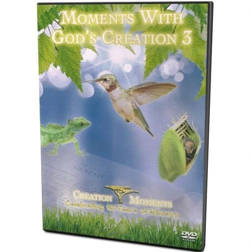 Moments with God's Creation 3 DVD