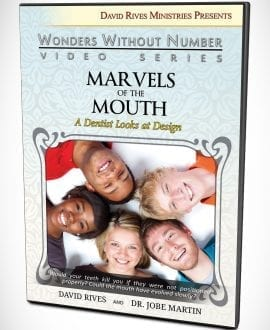 dvd-martin-mouth