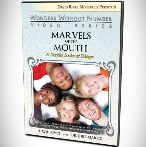 MARVELS OF THE MOUTH A Dentist Looks at Design DVD