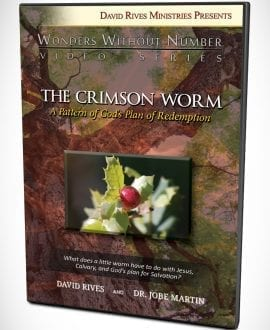 The Crimson Worm A Pattern of God's Plan of Redemption DVD