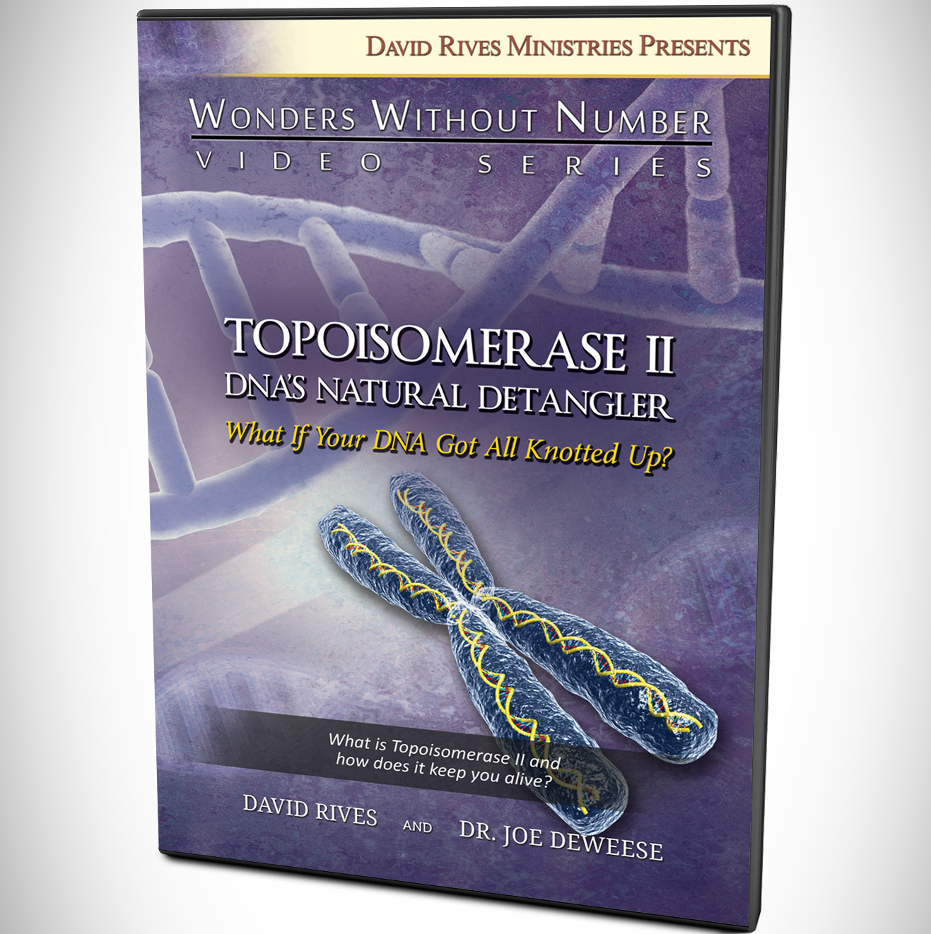 Topoisomerase ii dnas natural detangler drm topoisomerase ii dnas natural detangler malvernweather Gallery