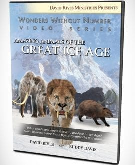 WWN - Buddy David Ice Age - DVD Cover