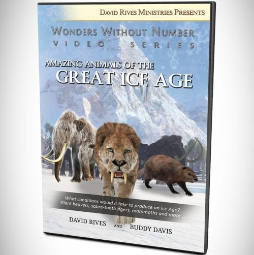 Amazing Animals Of The Great Ice Age DVD