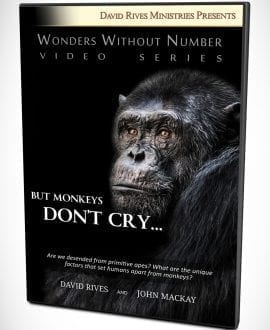 WWN - John Mackay - But Monkeys Don't Cry