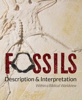 Fossils Description & Interpretation Book