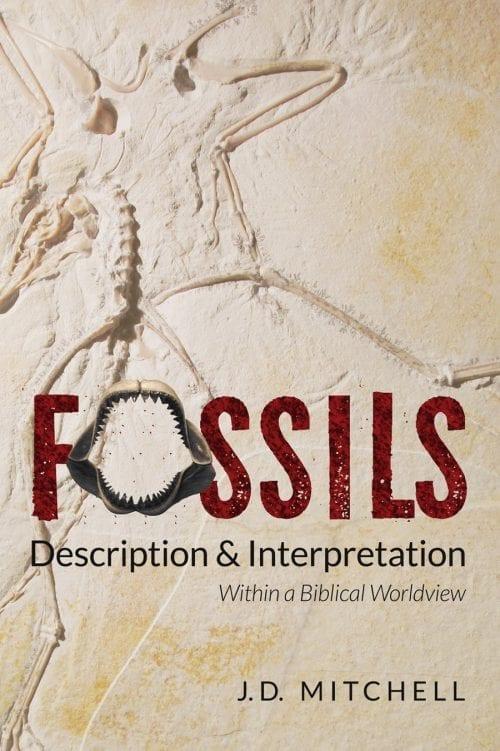 Fossils Description & Interpretation Book