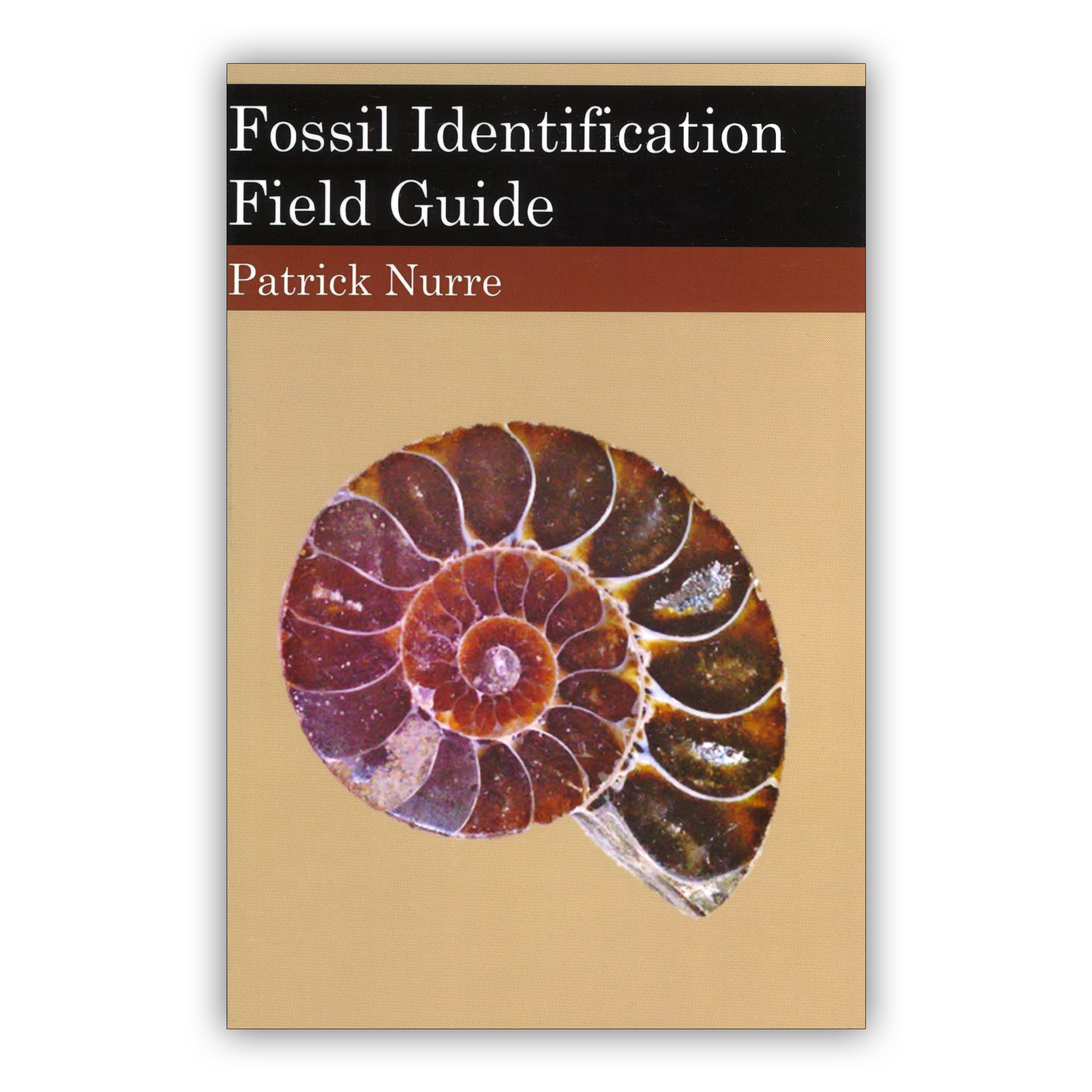 Fossil Identification Field Guide