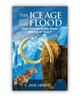 Ice Age and the Flood