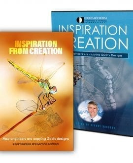 Inspiration from Creation book and dvd