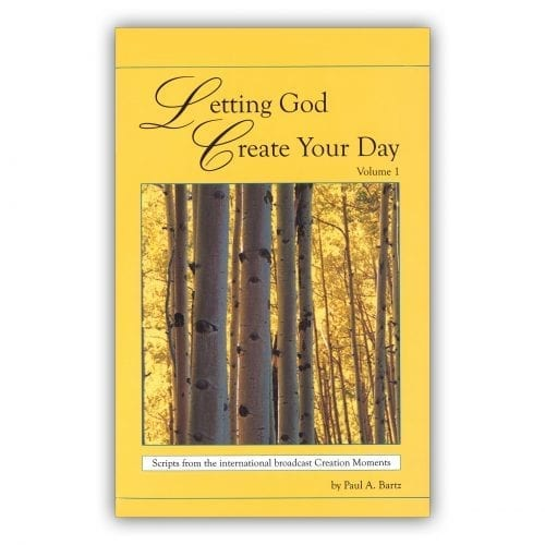 Letting God Create Your Day, Volume 1   Book