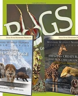 God's Amazing Animal World Book and DVD Pack