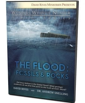 The Flood: Fossils & Rocks DVD