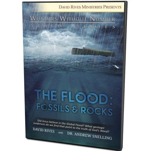 The Flood: Fossils & Rocks DVD