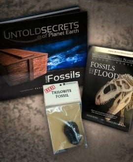 FLOOD FOSSILS Book and DVD Bundle