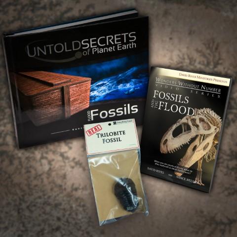 FLOOD FOSSILS Book and DVD Bundle