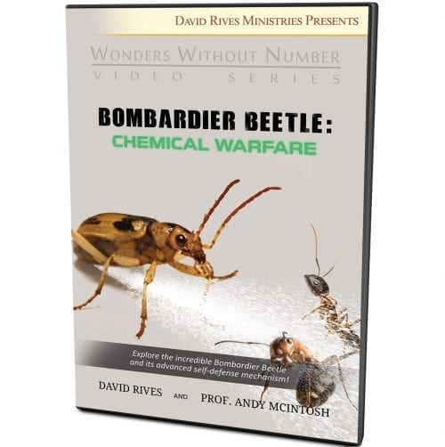Bombardier Beetle: Chemical Warfare DVD