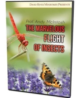 The Marvelous Flight of Insects DVD