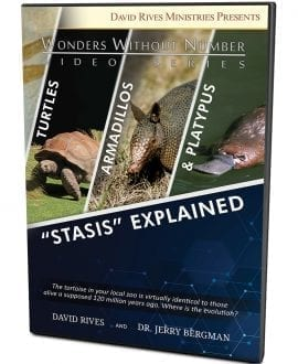 Stasis Explained DVD