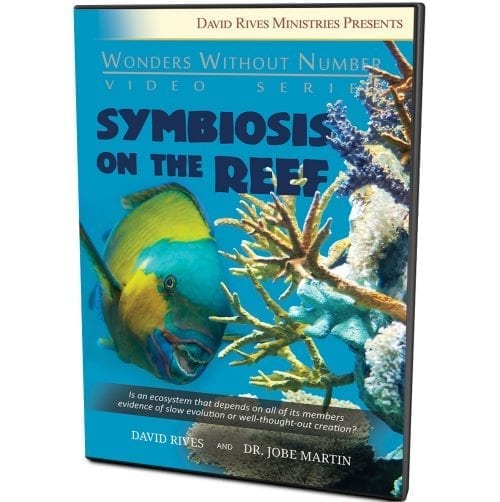 Symbiosis On The Reef DVD