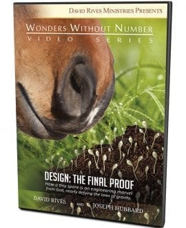 Design: The Final Proof DVD