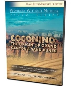 Coconino DVD