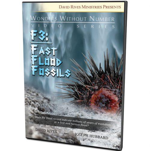 F3 Fast Flood Fossils DVD