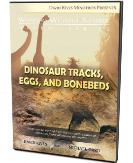 Dinosaur Tracks, Eggs and Bonebeds DVD